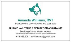 In Home Nail Trims and Medication Assistance by RVT