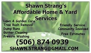 Fall Cleanup, Window & Gutter Cleaning & Lawn Care Service