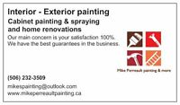 Looking for a professional painter part-time leading  full-time