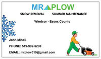Mr.Plow-Snow Removal, Eavestrough Cleaning, Tree Removal etc.