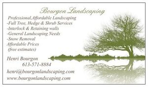 Tree,Shrub,Hedge Services  (BOURGON LANDSCAPING)