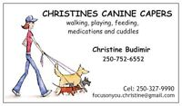 Christines Canine Capers  (dog Walker)