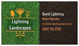 SPRING SPECIAL! Professional! Reliable! Leaf removal & lawn care