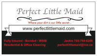 Prefect Little Maid cleaning Peterborough & The Kawartha lakes