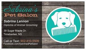 Dog Grooming - Sabrina's Pet Salon