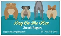 Dog on the Run - Grooming Studio and Boutique