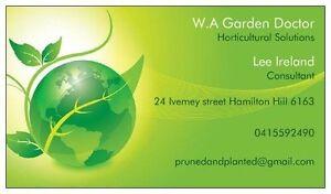 Garden Doctor Fremantle Fremantle Area Preview
