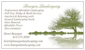 AUTUMN CLEAN-UP & GENERAL LANDSCAPING(BOURGON LANDSCAPING)