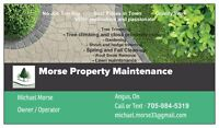Morse Property Maintenance and Tree Service