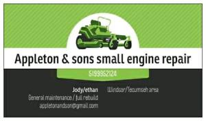 Appleton & son's small engine repair