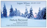 SNOW REMOVAL! Landscaping, and regular lawn care.