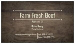 Farm Fresh Beef for Sale (Saskatchewan)