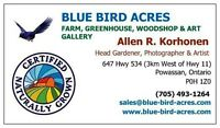 Organic Gardening Intern Position at Blue Bird Acres Farm