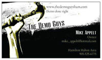 THE DEMO GUYS