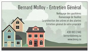 Final fall cleaning for your yard, windows, gutters and pool West Island Greater Montréal image 1