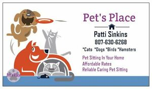 Pet's Place Pet Sittiing And Dog Walking Service