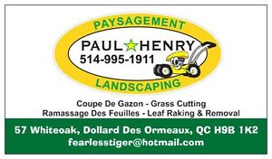 ramassage feuilles LEAF REMOVAL.. 514-995-1911 West Island Greater Montréal image 1
