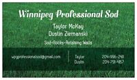 Lawn care / Snow removal