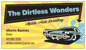 The Dirtless Wonders Mobile Auto Detailing