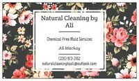 Cleaning Services in Stratford