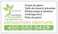 Gazon Entretien - Tonte de pelouse & Paysagement