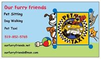 Our Furry Friends Pet Taxi Service for you and your Furry Friend