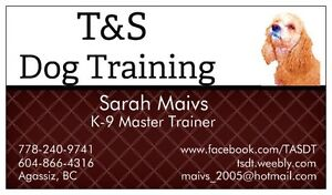 ***Certified Dog Training***