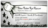 PITTER PATTER RAT RESCUE