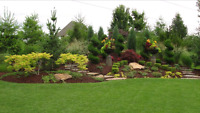 Landscaping help for your property needs
