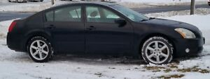 TWO FOR ONE - 2004 Nissan Maxima Sedans