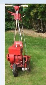 Petrol Lawn edger & strimmer