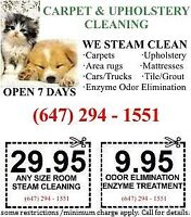 CARPET, FURNITURE, MATTRESS STEAM CLEANING