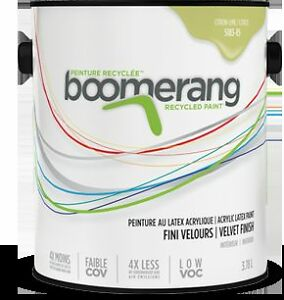 Boomerang Recycled Paint