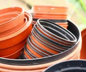 Gardening Pots - will take them off your hands