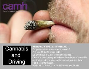 Cannabis and Driving Research Study