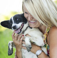 All-inclusive VACATION + TRAINING with your dog!