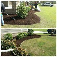 Fall yard clean up lawn raking bagging & Leaves Removal