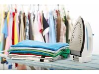 Ironing, House cleaning, Fridge cleaning, Window cleaning, Sorting, Shopping , Pet minding