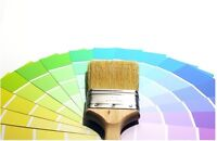 Female Painter - Excellent service and Professional Results.