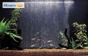 Aquarium Bubble Wall