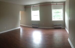 Bright & Spacious 1BR Unit in Windsor