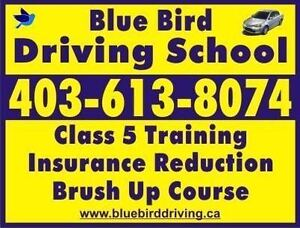 Blue Bird Driving School/Brush Up lesson