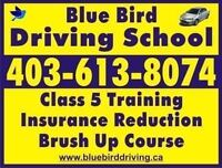 Driving school lessons 425$