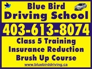 Blue Bird Driving School/Brush Up Lessons