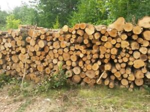 Fire wood.150 a cord delivered