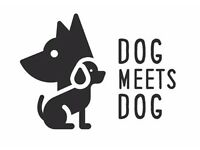 Dog Meets Dog - dog walking services in Marchwood, Southampton