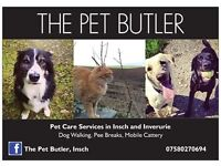 DOG WALKER, CAT SITTER INVERURIE AND INSCH