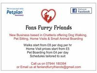 Fens Furry Friends Dog Walking & Pet Sitting