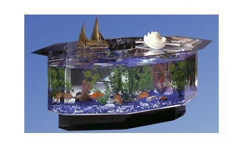 Superbe Aquarium Coffee Table | EBay