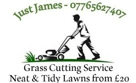 Grass/Lawn Cutting/Mowing Service